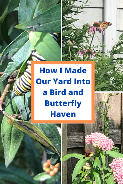 How I Made Our Yard Into a Bird and Butterfly Haven