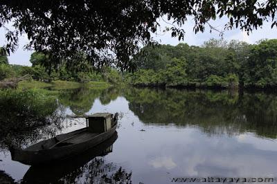 Pesona Keindahan Desa dan Hutan Wisata Buluhcina