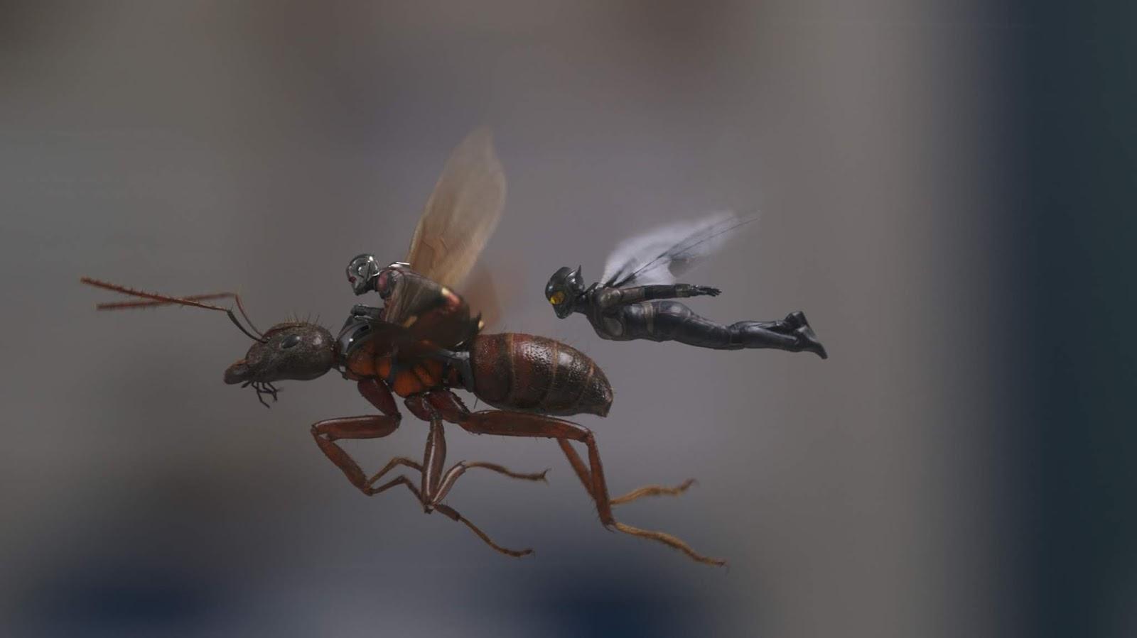 Как из мухи раздуть слона, знает Человек-муравей и Оса :) Марвел, много, которые, засветились, ВАУУУУ, ощущения, испытываю, давно, время, последнее, Муравьем, между, линия, любовная, Слабоватая, особо, фильмов, Мстителями, связанным, событиям