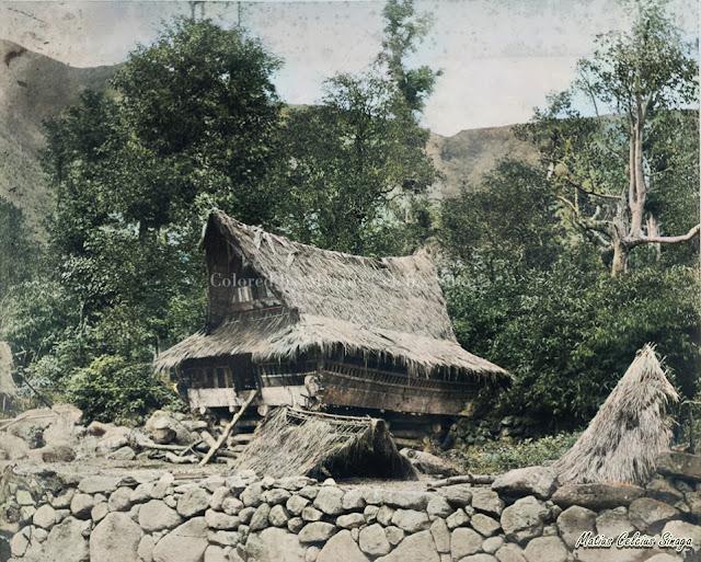 rumah adat suku batak toba disekitar wilayah tongging
