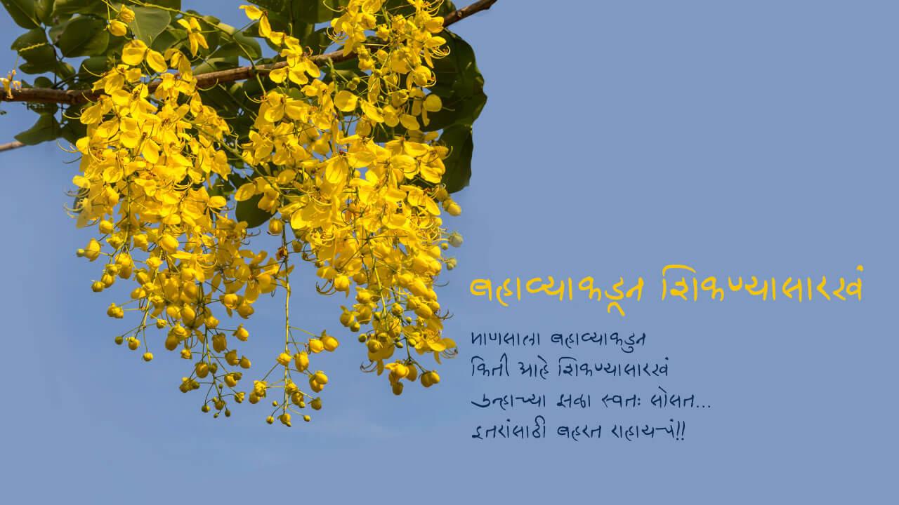 बहाव्याकडून शिकण्यासारखं - मराठी कविता | Bahavyakadun Shikanyasarakh - Marathi Kavita