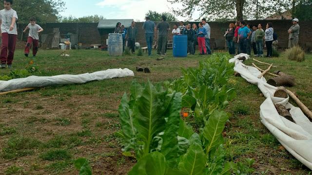 ¡Aquí estamos! Curso Auxiliar de jardinería en APADIM