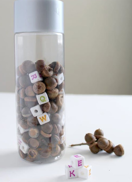 acorn abc discovery bottle