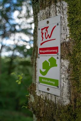 Wasgau-Felsenweg | Wandern Südliche Weinstraße | Naturpark Pfälzerwald 17