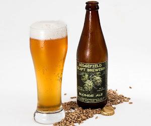 Perché le bottiglie di birra sono sempre di vetro scuro e non trasparente?