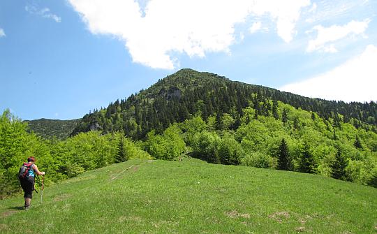 Przed nami Príslop pod Suchým (1202 m n.p.m.), za nim piętrzy się Suchý.