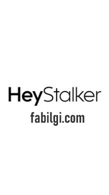 Instagram HeyStalker Uygulaması Profile Bakanları Görme 2021