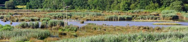 Reserva de la biosfera de Urdaibai