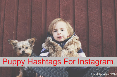 Puppy tags For Instagram