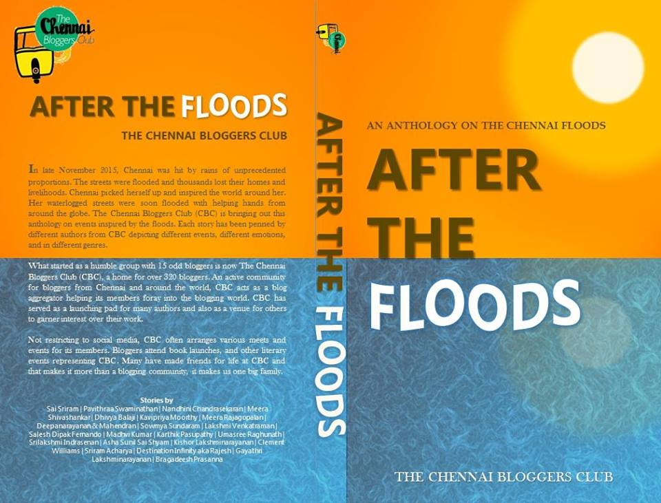 After the Floods - Published 2015