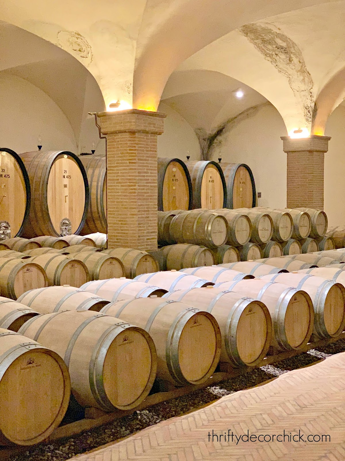 Light wood wine barrels brick floors in Italy