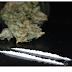Segundo estudo, maconha não ajuda e pode piorar o quadro de viciados em cocaína