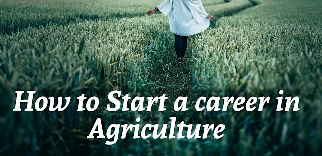 How to Start a career in agriculture after graduation