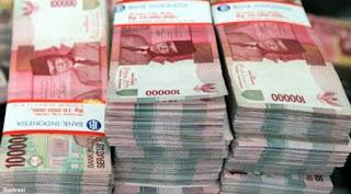 pengertian, fungsi dan siklus anggaran negara