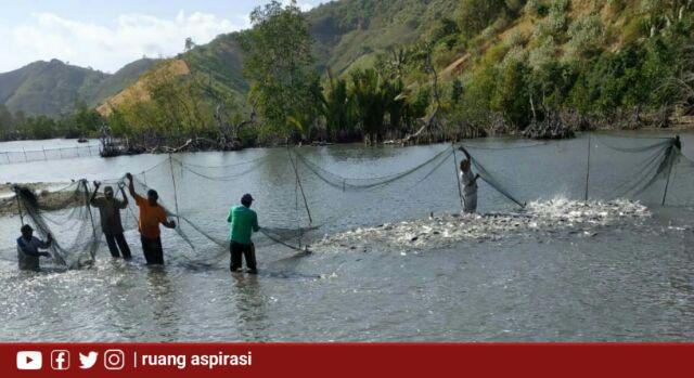 Kunjungi Panen Raya Ikan Bandeng di Boalemo, Kemendes Ajak Pemdes Manfaatkan Potensi SDA