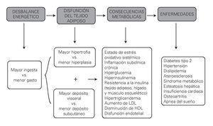 Figura 3. Mecanismos de disfunción del tejido adiposo y su repercusión metabólica (3° cuadro gris; las consecuencias metabólicas).