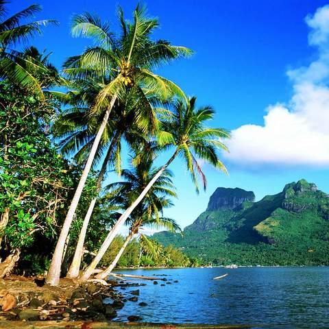 Lirik Lagu Jaga Cinta Bae Bae - Pemdazone GRC ft Qibata Crew dan Virus Papua
