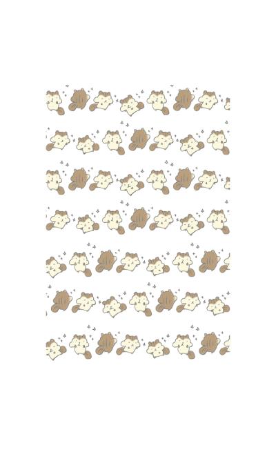 The cute chipmunk
