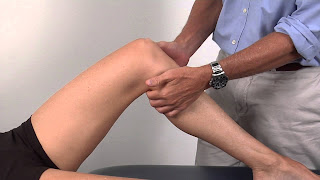 Popliteal pulse Definition, Point location, Rate, Palpation, Landmark