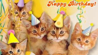 happy birthday cat art