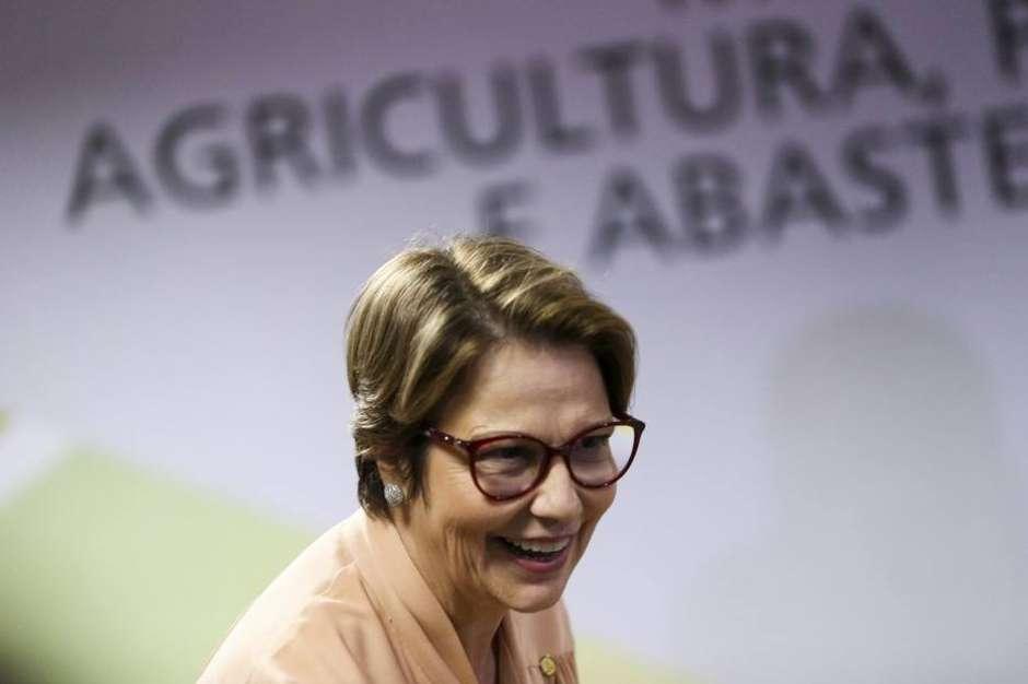 """Ministra da Agricultura diz: Mais veneno para o povo é """"modernidade"""""""