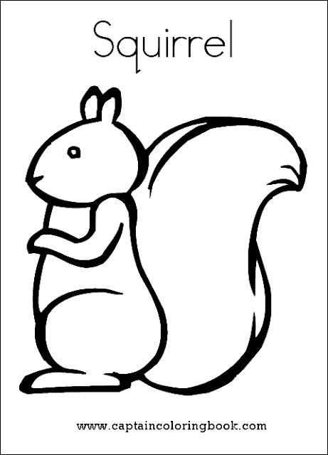 Preschool Squirrel Coloring Page