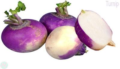 শালগম; Turnip; 芜菁; Navet; Steckrübe; カブの野菜; शलजम; репа; Nabo