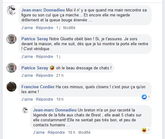 Jean-Marc Donnadieu ne connaît pas les chats... dans Folie Seray%2Bchez%2BJean-marc%2BDonnadieu%2B2%2B-%2Bwww.facebook.com