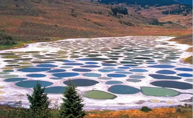 Spotted Lake, Canada