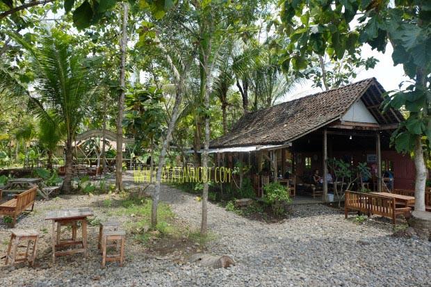 5500 Gambar Rumah Sederhana Pinggir Sawah HD