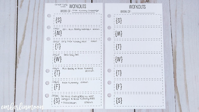 SewMuchCrafting - Workout Inserts