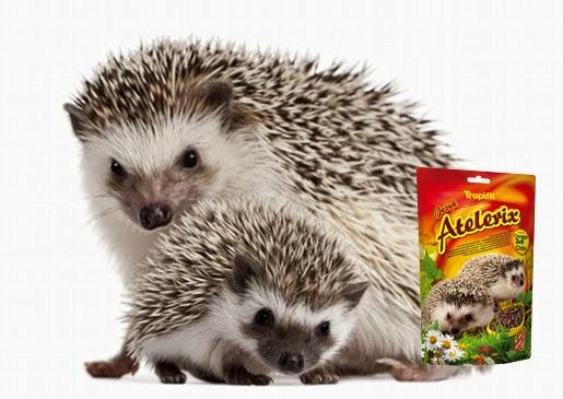 Pokarm dla jeży miniaturowych i inne pokarmy marki Tropifit