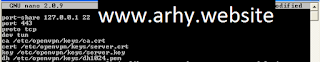 Setting SSH dan VPN di Port 443