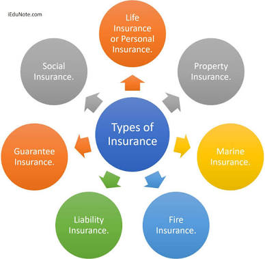 CHAPTER 3 TYPE OF INSURANCE