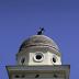 Συγκλονιστικά βίντεο-ντοκουμέντα από τον ισχυρό σεισμό στην Αθήνα