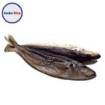 Ikan Dencis Rebus 250 Gram