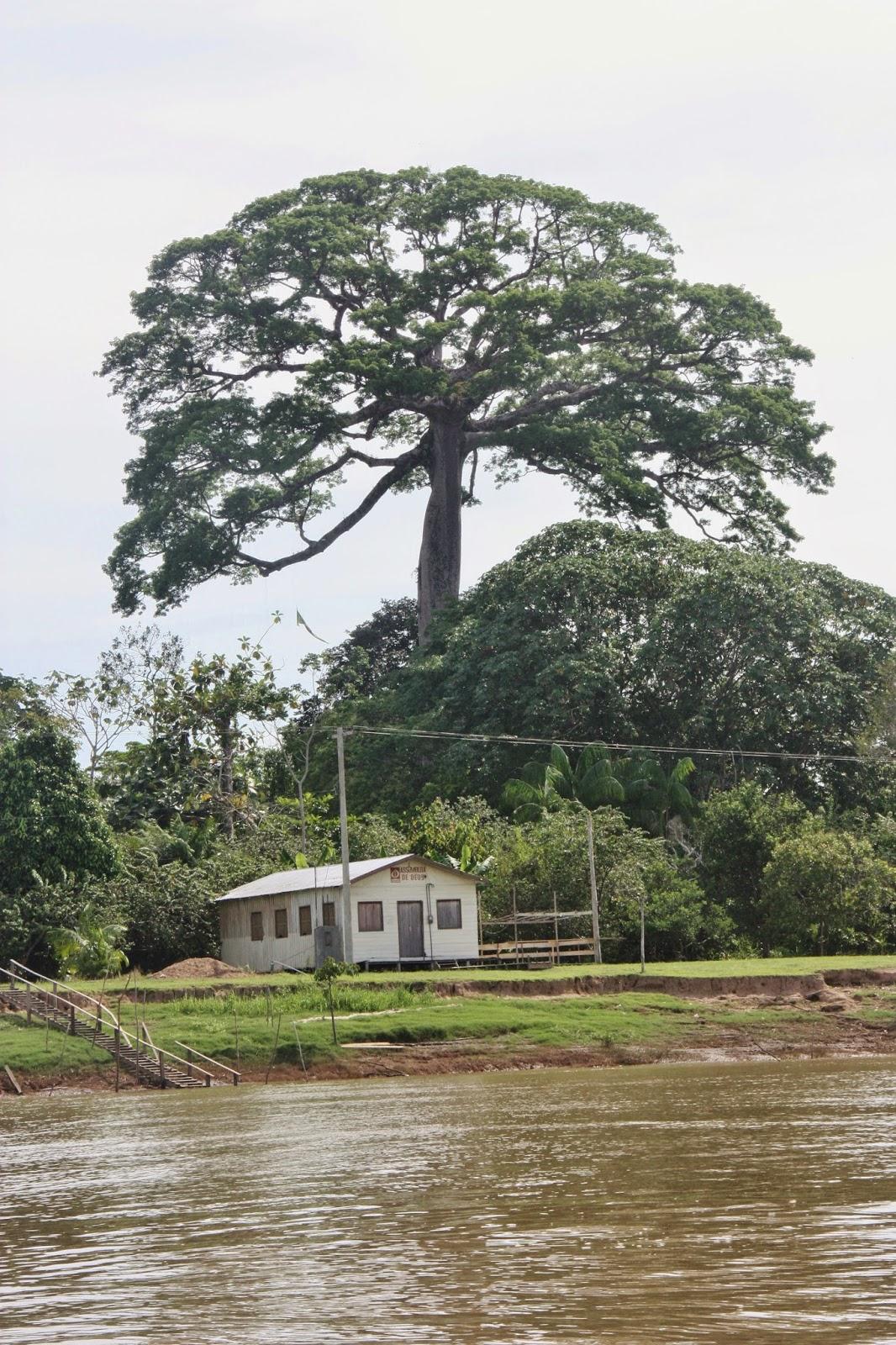 Experiência de turismo de base comunitária na Reserva Sustentável Mamitrauá.