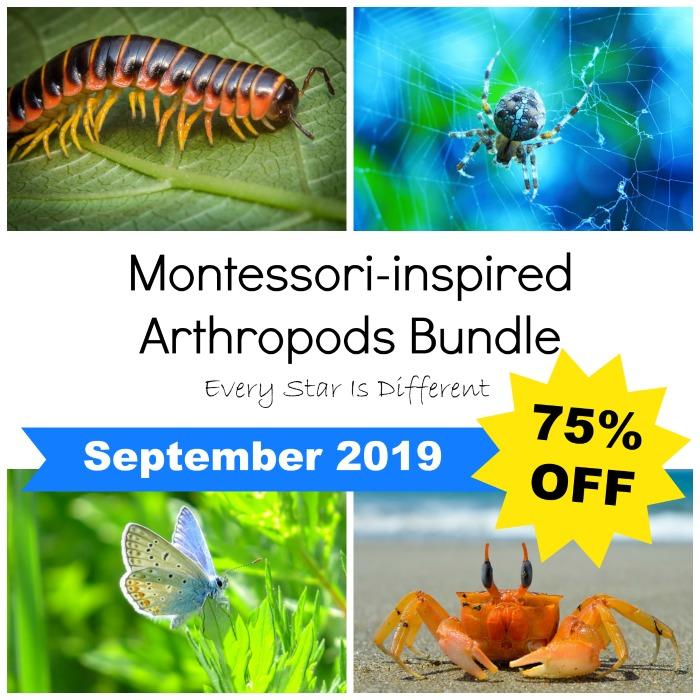 Montessori-inspired Arthropods Bundle