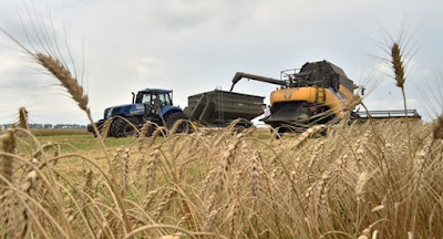 Кабмін планує відкрити ринок землі з 1 жовтня 2020 року