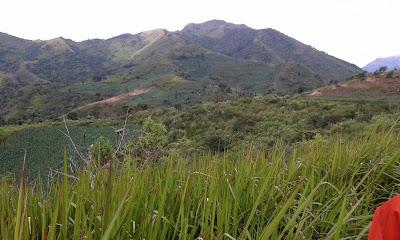 Ladang-Sigandul-Via-Cemoro-Santridanalam