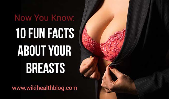 Now You Know: 10 Fun Facts About Your Breasts: WikihealthBlog