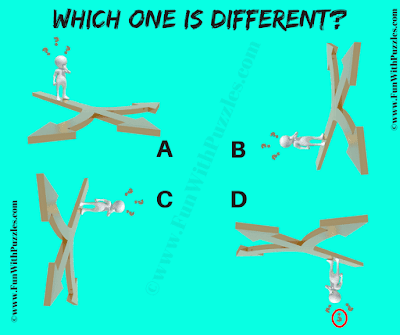 The Answer to this Odd One Out Picture Puzzle is D.