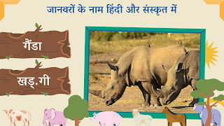 rhinoceros name in sanskrit and hindi with images