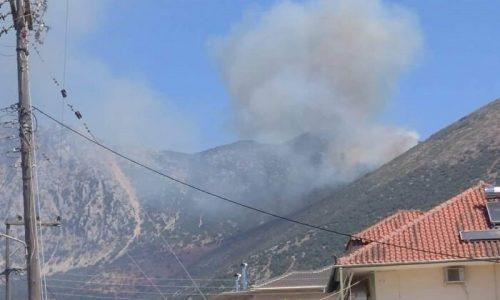Σε απόσταση αναπνοής από τα σπίτια έφτασαν οι φλόγες στην Σκαφιδωτή του Δήμου Πάργας.