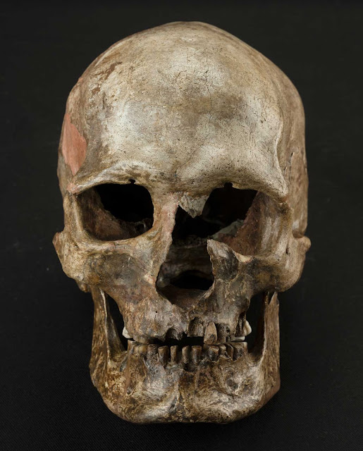 DNA evidence uncovers major upheaval in Europe near end of last Ice Age