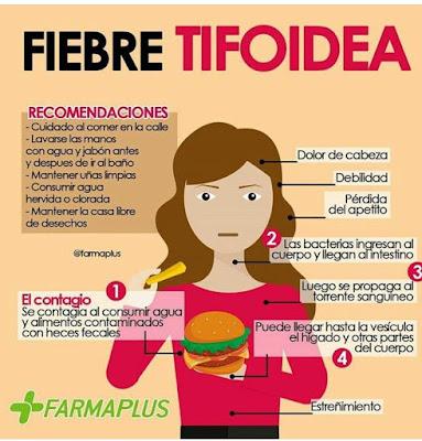 Fiebre tifoidea, que es la fiebre tifoidea, sintomas de la fiebre tifoidea, tratamiento de la fiebre tifoidea, tratamiento para la fiebre tifoidea,
