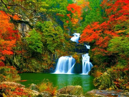 Autumn Falling Leaves Live Wallpaper The Beautiful Autumn Wallpaper For Your Desktop