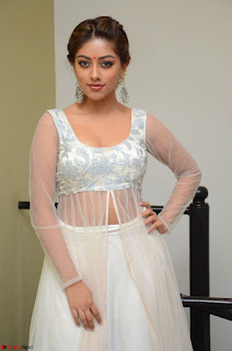 Anu Emmanuel in a Transparent White Choli Cream Ghagra Stunning Pics 119.JPG
