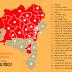 Parceria que fortalece agricultura familiar tem adesão de 388 municípios baianos