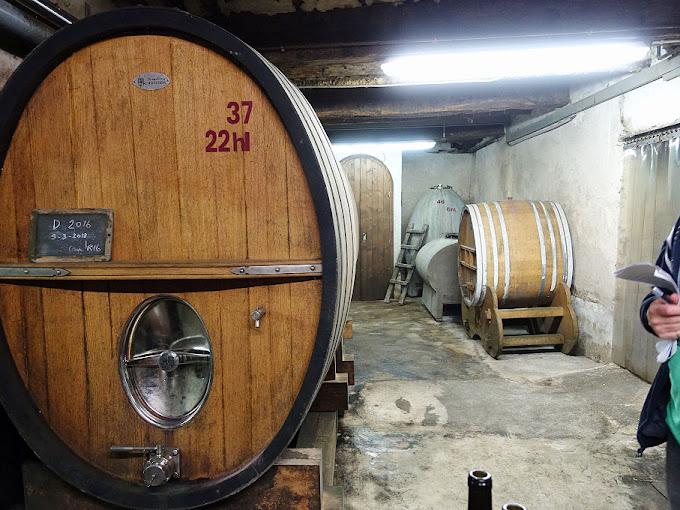 Domaine Oratoire Saint-Martin cellar